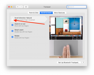 screenshot of trackpad preferences