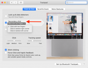 screenshot of trackpad settings